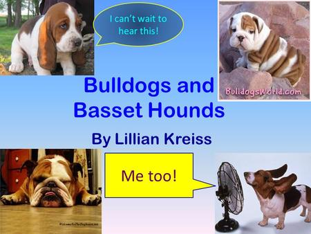 Bulldogs and Basset Hounds By Lillian Kreiss I can't wait to hear this! Me too!