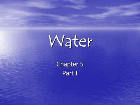 a day without water essay