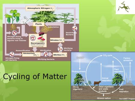 Cycling of Matter. Warm Up  Difference between abiotic & biotic factors  Abiotic factors affecting oak tree growth  Southern ON  Arctic - vegetation.