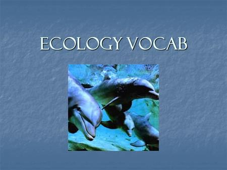 Ecology Vocab. What is Ecology? Ecology - The relationship between organisms and its environment. Ecology - The relationship between organisms and its.