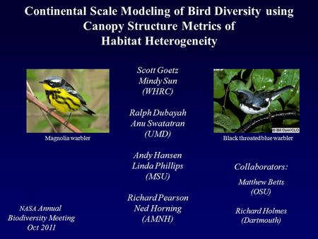 Continental Scale Modeling of Bird Diversity using Canopy Structure Metrics of Habitat Heterogeneity Scott Goetz Mindy Sun (WHRC) Ralph Dubayah Anu Swatatran.