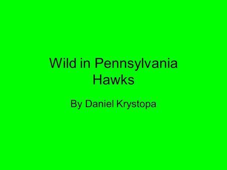 Wild in Pennsylvania Hawks By Daniel Krystopa. Introduction Have you ever wanted to fly like a hawk? In this presentation you can learn about hawks.