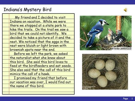 Page1 Indiana's Mystery Bird My friend and I decided to visit Indiana on vacation. While we were there we stopped at a state park to hike the trails.