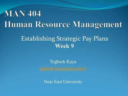 Tuğberk Kaya Near East University Establishing Strategic Pay Plans Week 9.