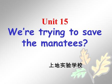Unit 15 We're trying to save the manatees? 上地实验学校.
