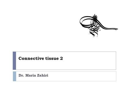 Connective tissue 2 Dr. Maria Zahiri. Formation of Type I collagen  Within the cell  During translation, two types of peptide chains are formed on ribosomes.