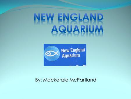 By: Mackenzie McPartland. Opened on June 20,1969 There have been four main aquariums in Boston In 1978, there was a large blizzard that destroyed many.