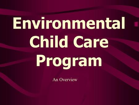 Environmental Child Care Program An Overview. Discussion Points Types of facilities/licensing status DHSS Environmental Child Care Program Interaction.