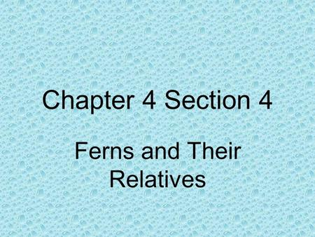 Chapter 4 Section 4 Ferns and Their Relatives. Characteristics of Seedless Vascular Plants Ferns and their relatives share two characteristics. They have.