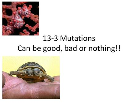 "13-3 Mutations Can be good, bad or nothing!!. What is a mutation? The word is Latin for ""to change"". There are 2 types: – 1) Single gene changes – 2)"