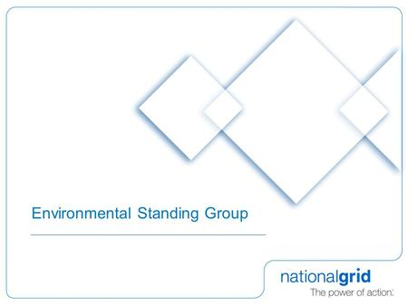 Environmental Standing Group. 2 Background  Ofgem issued an open letter on 15 th April 2008 to consider issues associated with carbon assessment for.