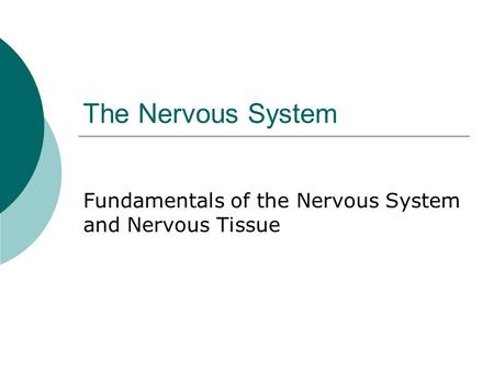 The Nervous System Fundamentals of the Nervous System and Nervous Tissue.