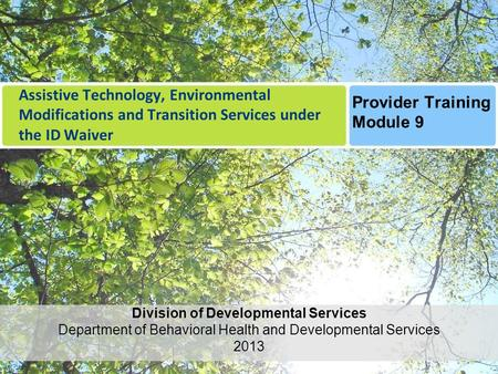 Assistive Technology, Environmental Modifications and Transition Services under the ID Waiver Division of Developmental Services Department of Behavioral.