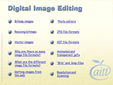"Bitmap images Resizing bitmaps Vector images Why are there so many image file formats? Resolution and Scanning ""Bits"" and.bmp files Photo editors JPG file."