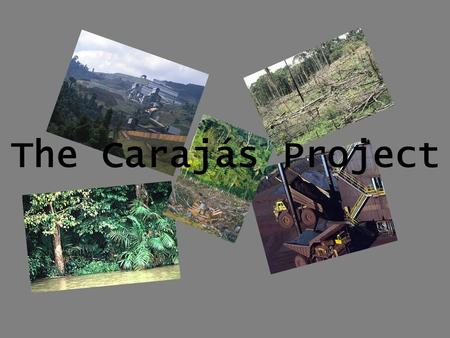 The Carajás Project. Aims To take Brazil out of debt To mine deposits of iron ore (18 billion tonnes) Plant plantations of trees Initial Results Deforestation.