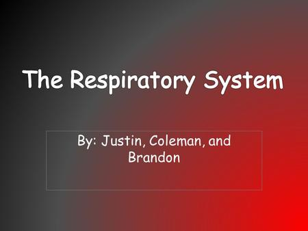 By: Justin, Coleman, and Brandon. The Function The function of the respiratory is that it supplies blood with oxygen for the blood to deliver oxygen to.