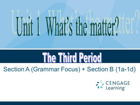 Section A (Grammar Focus) + Section B (1a-1d). Unit 1: What's the matter? Period 3.