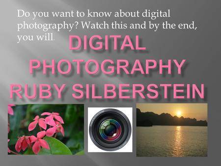 Do you want to know about digital photography? Watch this and by the end, you will.