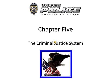 the components of criminal justice He most important components of the criminal-justice system are police, courts, and corrections.
