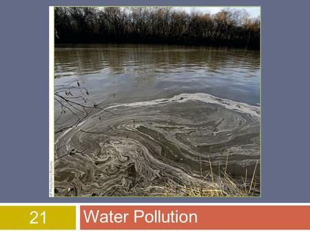 21 Water Pollution. © 2015 John Wiley & Sons, Inc. All rights reserved. Overview of Chapter 21  Types of Water Pollution  Water Quality Today  Agricultural,