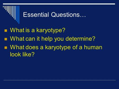 Essential Questions… What is a karyotype? What can it help you determine? What does a karyotype of a human look like?