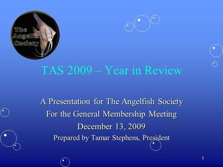 1 TAS 2009 – Year in Review A Presentation for The Angelfish Society For the General Membership Meeting December 13, 2009 Prepared by Tamar Stephens, President.