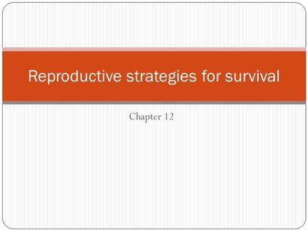 Chapter 12 Reproductive strategies for survival. Reproductive adaptations Refers to any strategy that aims to increase the chance of successful reproduction.