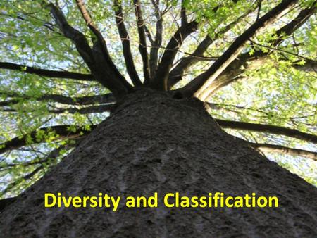 "Diversity and Classification. Taxonomy ""The science of naming organisms and assigning them to groups."" Taxa- groups to which Linnaeus assigned organisms;"