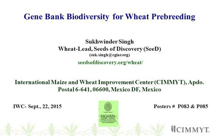 Gene Bank Biodiversity for Wheat Prebreeding