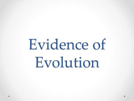 Evidence of Evolution Main Types of Evidence 1. Fossils 2. Homologous structures 3. Embryology.