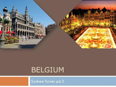 BELGIUM Sydnee Turner pd.3.  Vacation Spot Vacation Spot  Climate Climate  How to get there  Hotel  Main Attraction  Food &Dining  What to pack.
