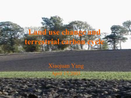 Land use change and terrestrial carbon cycle Xiaojuan Yang April 17,2003.