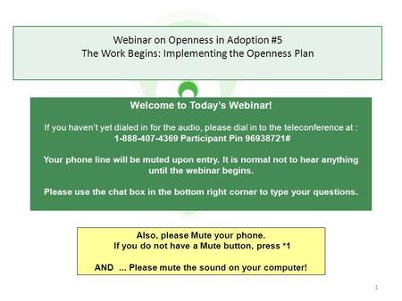 Webinar on Openness in Adoption #5 The Work Begins: Implementing the Openness Plan Welcome to Today's Webinar! If you haven't yet dialed in for the audio,