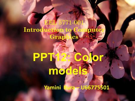 EEL 5771-001 Introduction to Computer Graphics PPT12: Color models Yamini Bura – U66775501.