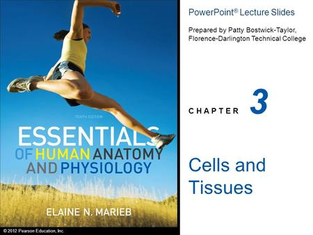 © 2012 Pearson Education, Inc. PowerPoint ® Lecture Slides Prepared by Patty Bostwick-Taylor, Florence-Darlington Technical College C H A P T E R 3 Cells.