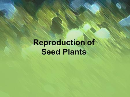 Reproduction of Seed <strong>Plants</strong>. Alternation of Generation All <strong>plants</strong> life cycle alternates Diploid Sporophyte  Haploid Gametophyte Sporophyte = Entire.