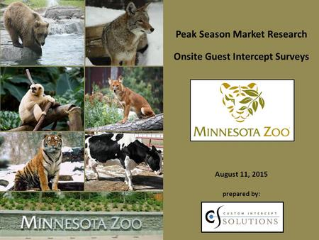 Peak Season Market Research Onsite Guest Intercept Surveys August 11, 2015 prepared by: