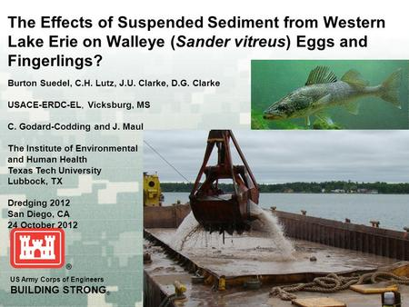 US Army Corps of Engineers BUILDING STRONG ® The Effects of Suspended Sediment from Western Lake Erie on Walleye (Sander vitreus) Eggs and Fingerlings?