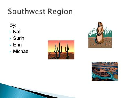 By:  Kat  Surin  Erin  Michael. The States in the Southwest are  Texas  Oklahoma  Arizona  New Mexico.