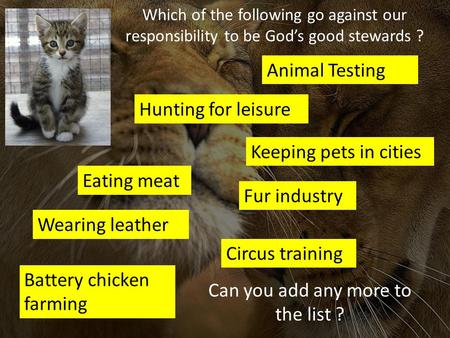 Animal Testing Eating meat Wearing leather Hunting for leisure Keeping pets in cities Battery chicken farming Circus training Fur industry Which of the.