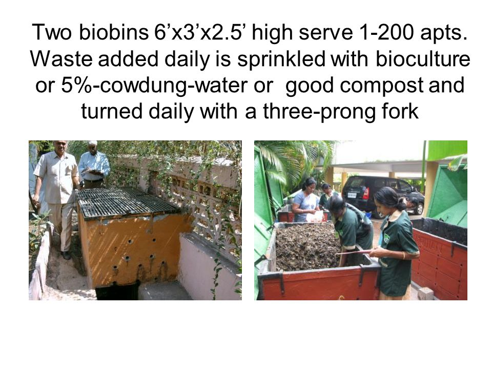 Hand-sieve bio-bin-stabilised compost to beautify street, or sell if there is demand.