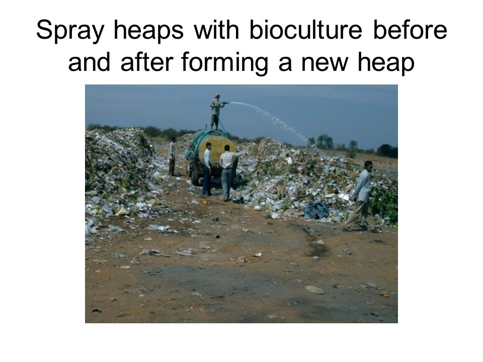 After spraying, shape the heaps into windrows 2 meters high.