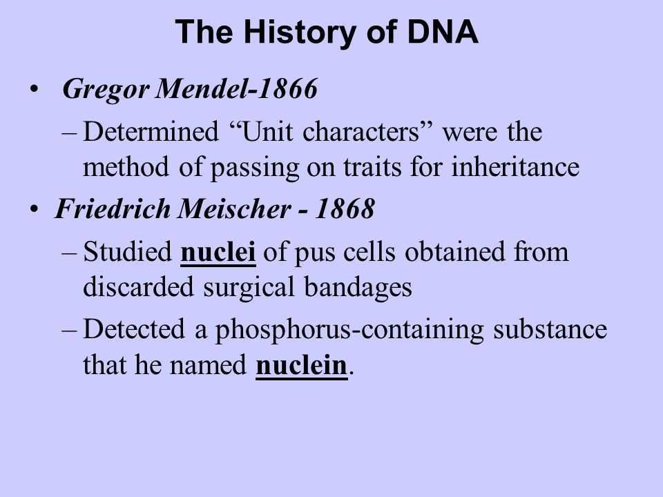 The History of DNA Gregor Mendel-1866 –Determined Unit characters were the method of passing on traits for inheritance Friedrich Meischer - 1868 –Studied nuclei of pus cells obtained from discarded surgical bandages –Detected a phosphorus-containing substance that he named nuclein.