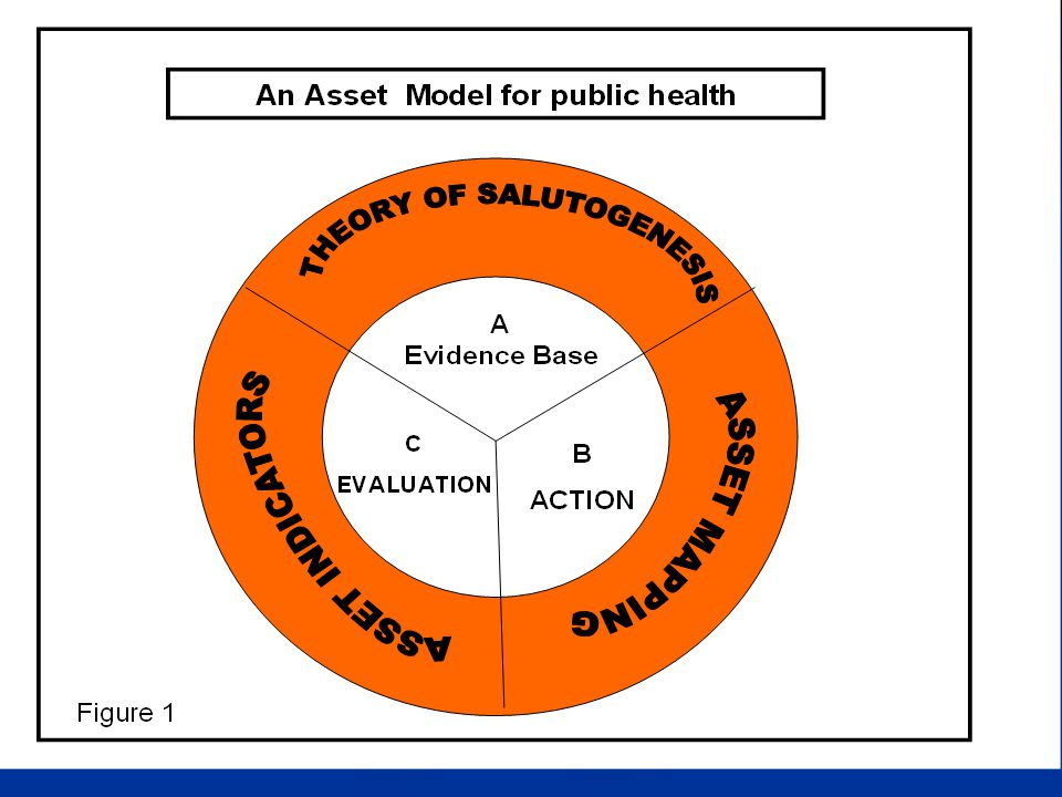 Assets and deficits Much of the evidence base available to address inequalities is based on a deficit (pathogenic) model of health.