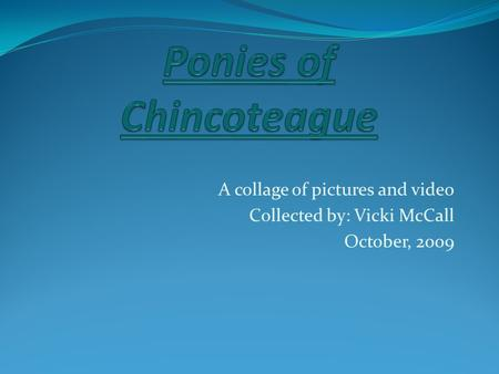 A collage of pictures and video Collected by: Vicki McCall October, 2009.