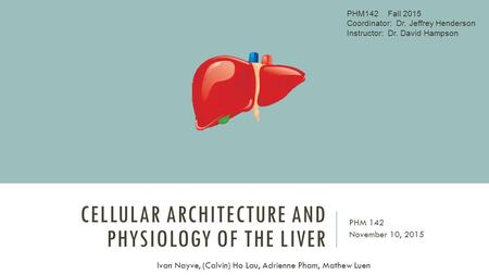 CELLULAR ARCHITECTURE AND PHYSIOLOGY OF THE LIVER PHM 142 November 10, 2015 Ivan Nayve, (Calvin) Ho Lau, Adrienne Pham, Mathew Luen PHM142 Fall 2015 Coordinator: