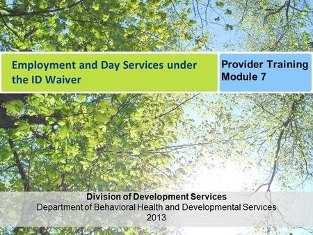 Employment and Day Services under the ID Waiver Division of Development Services Department of Behavioral Health and Developmental Services 2013 Provider.