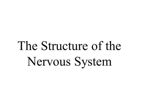 The Structure of the Nervous System. Divisions of the Nervous System.