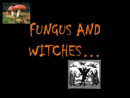 FUNGUS AND WITCHES…. THE SALEM WITCH TRIALS 1692 A series of hearings prosecuting many people of practicing witchcraft… Women and men were executed by.