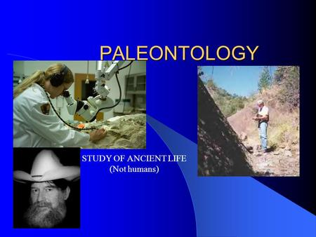 PALEONTOLOGY STUDY OF ANCIENT LIFE (Not humans) Smithsonian.